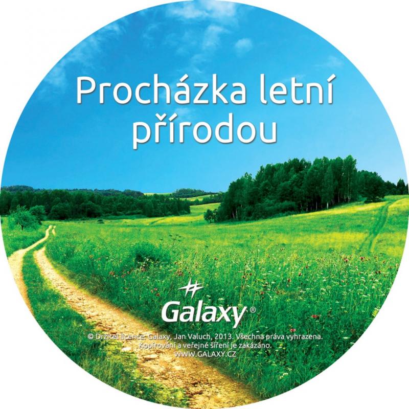Relaxační CD, procházka letní přírodou